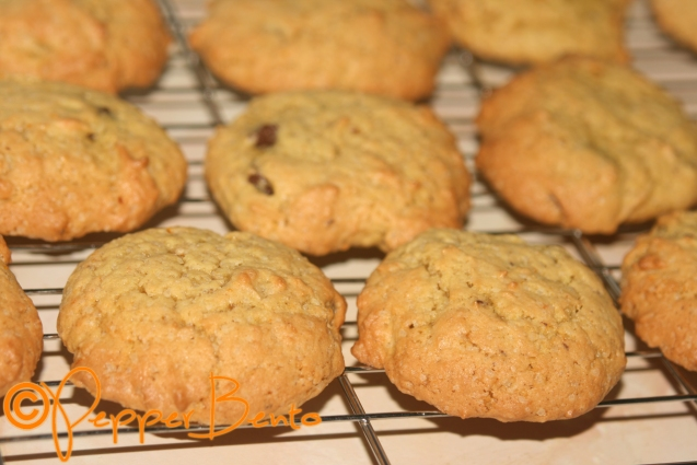 Orange And Chocolate Cookies 2